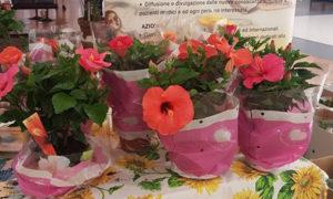 maggio-2016-lasciamo-fiorire-la-speranza-roma-5