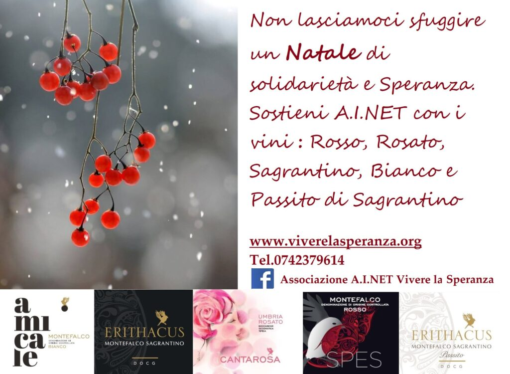 spes in vino AINET